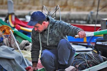 Fisherman berthing his Luzzu