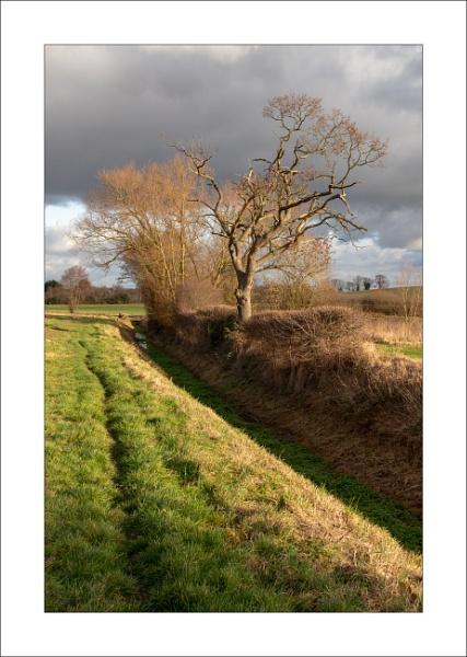 Edingley Beck by Steve-T