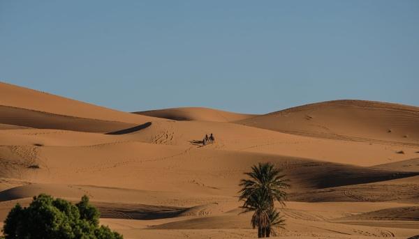 Desert by Franticsmurf