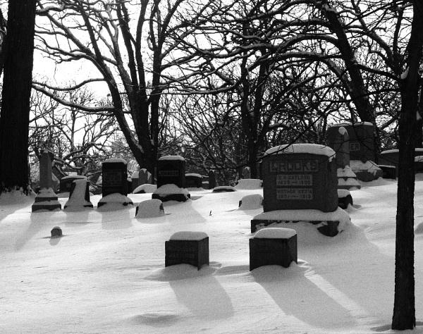 Snow Fall by Merlin_k