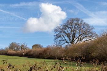 Farmland adjacent to Ardingly Reservoir in Sussex
