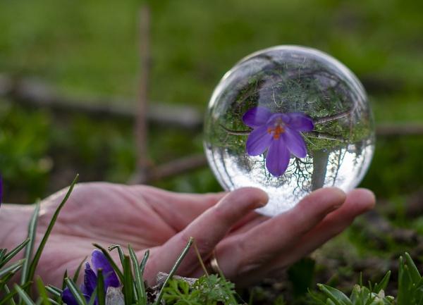 Sphere in hand by Gordonsimpson