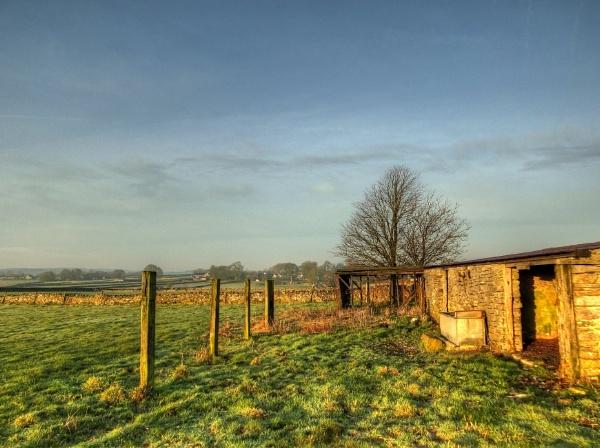 Winter Morning Light by ianmoorcroft