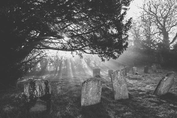 Misty morning by Chriscox