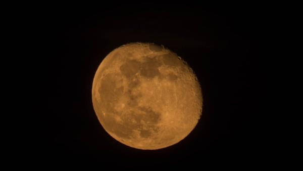 Moon to Night by franpat