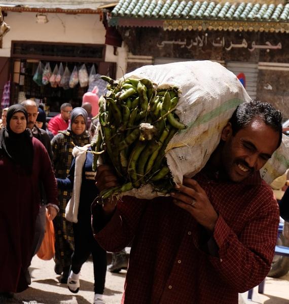 Working Men (2), Fez by EveLine1