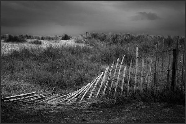 Windblown Fence by AlfieK