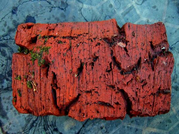 drop a brick by leo_nid