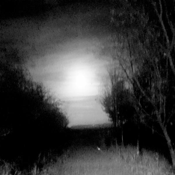 Spooky by B3DD0W5