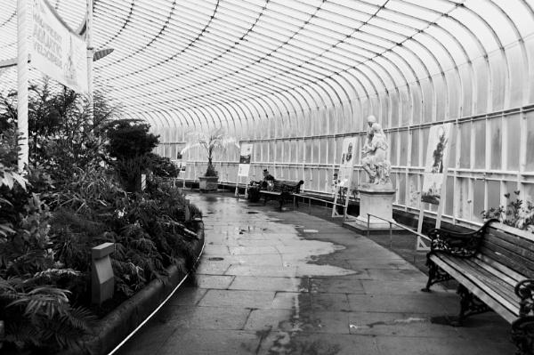 Glasgow Botanic Gardens by elmer1