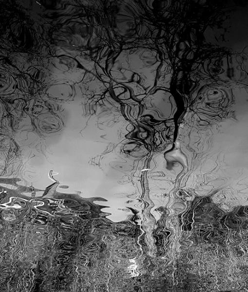 Untitled by stevept