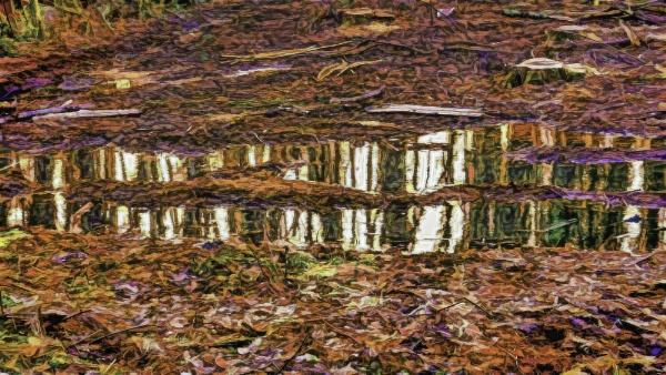 Mulch and Mud by RLF
