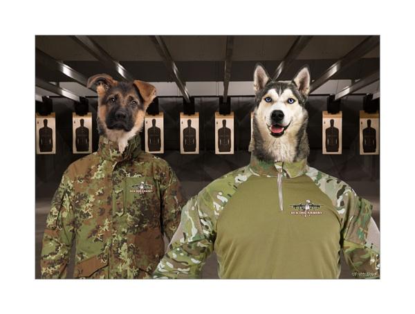 Gun Dogs by NDODS