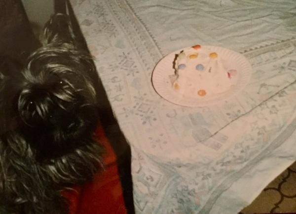 Happy birthday! by laura1