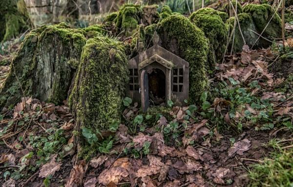 Anyone Home? by BillRookery
