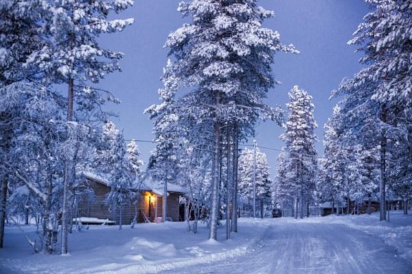 Reindeer Farm, Lapland by Owdman