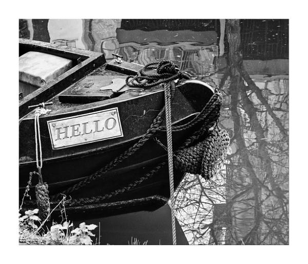 Hello by AlfieK