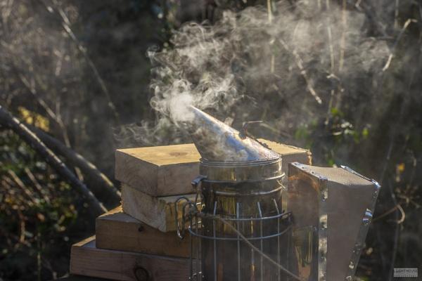 Beekeepers smoker by LighthousePhotography