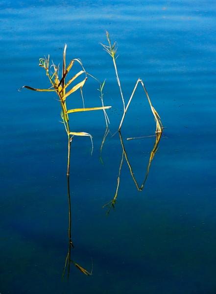 Dancing on water by Meletis