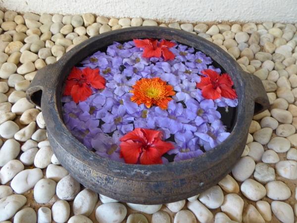 Flower beauties... by Chinga