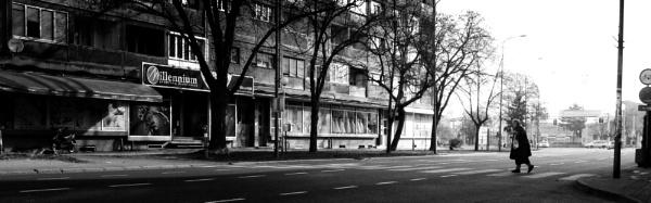 Shadows of Morning XXXII by MileJanjic