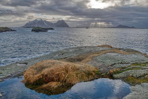 Arctic Sunburst by Ingymon