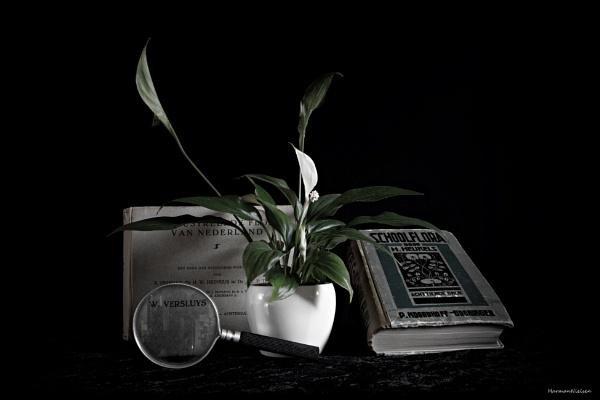On botanism. by HarmanNielsen