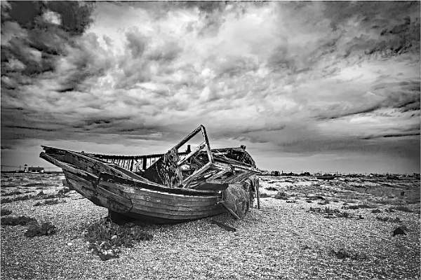 Dungeness by dven