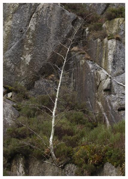Cliff Hanger by JelFish