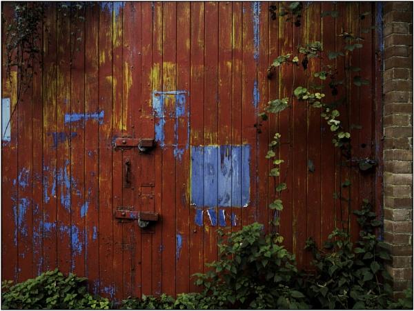 Garage Doors by woolybill1