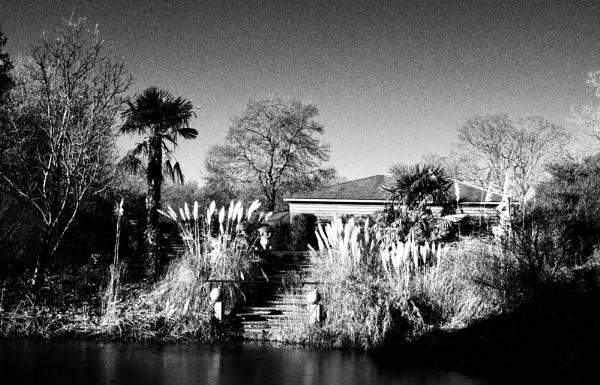 Lakeside by nclark