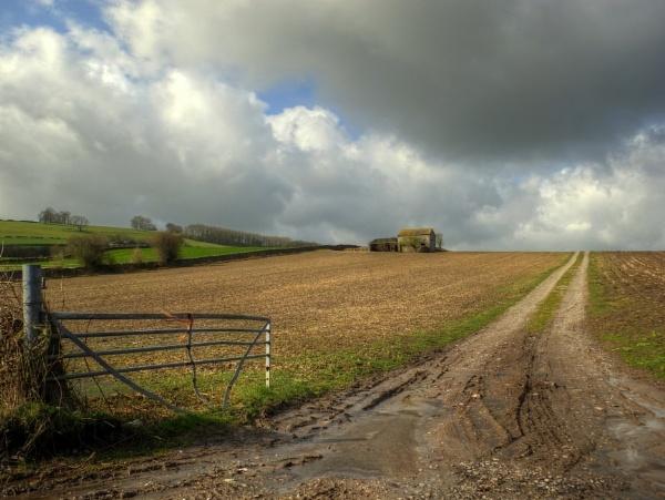Country Tracks by ianmoorcroft