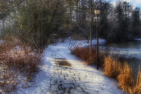 Winter Walk by eaglemtn