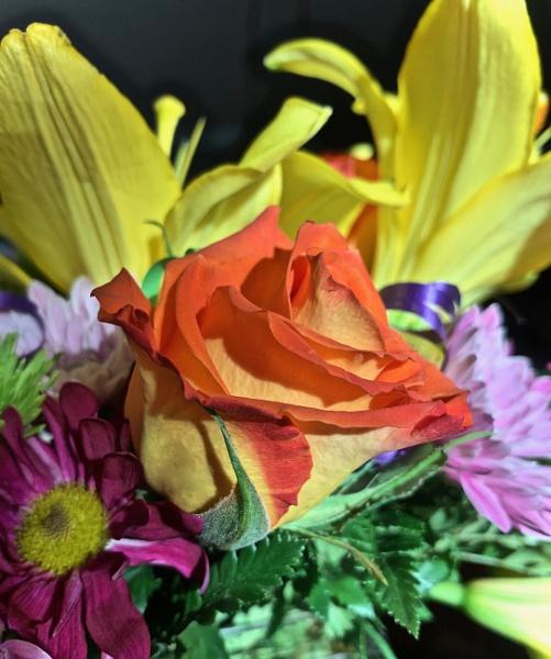Birthday flowers by sheilajean48