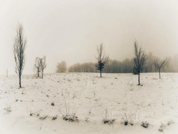 Minimalistic winter by Sony2