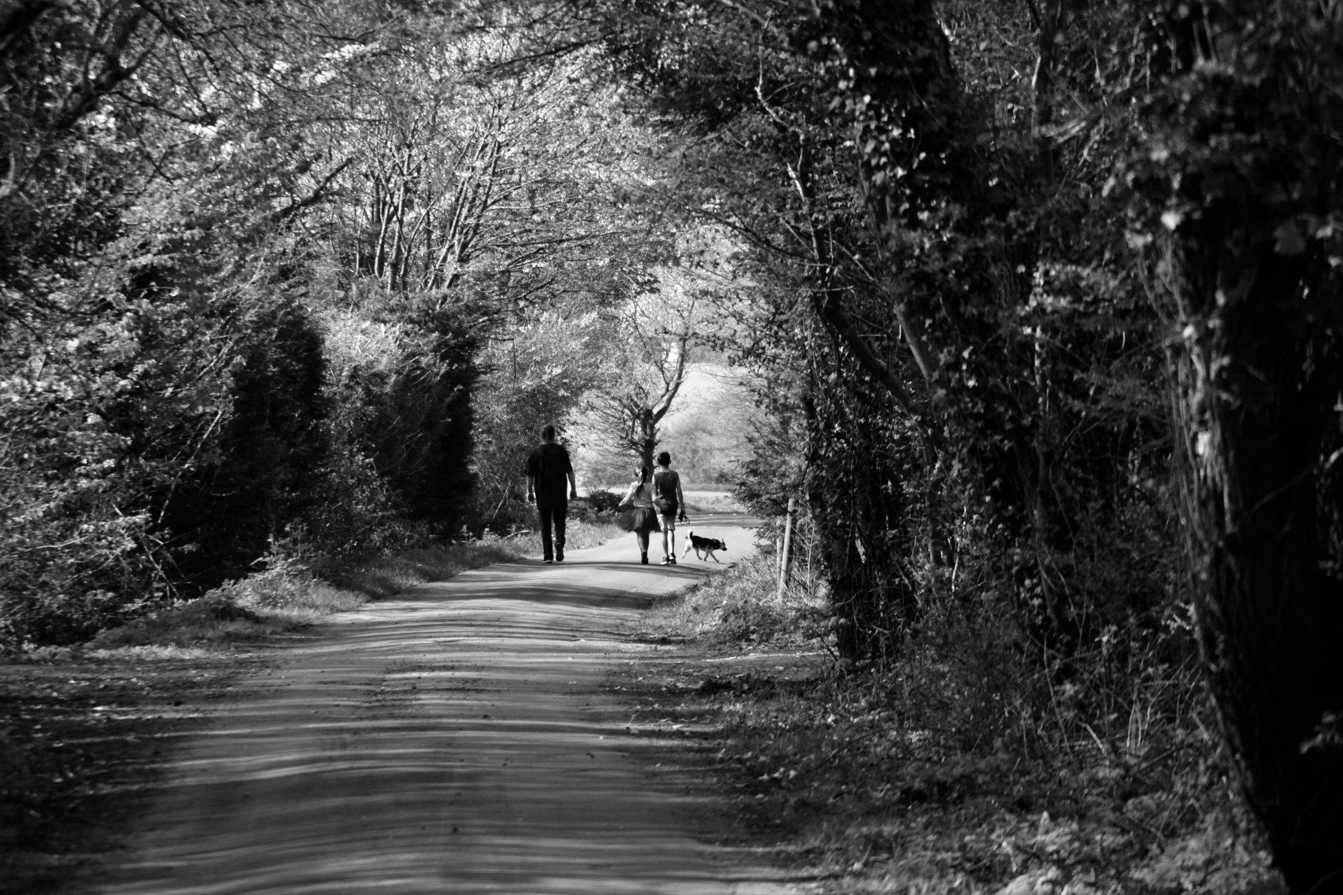 Just A Stroll