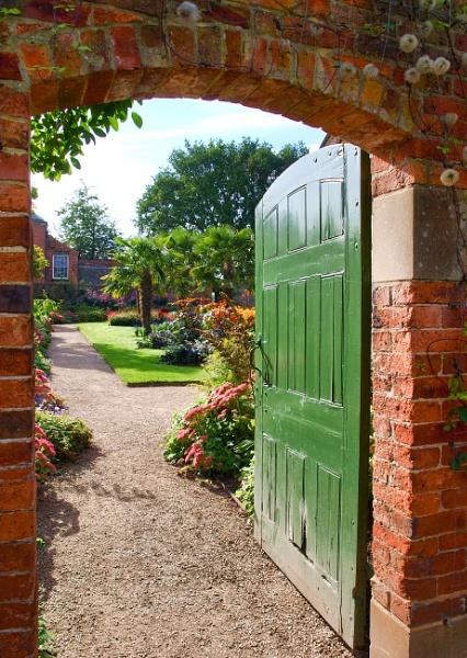 Green Door by adagio