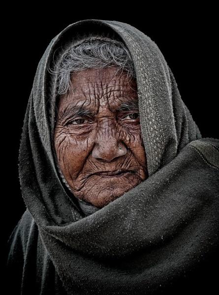 Rajasthani matriarch by sawsengee