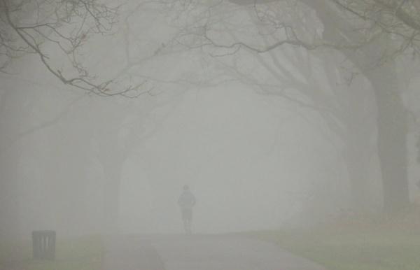 Foggy Morning by SUE118