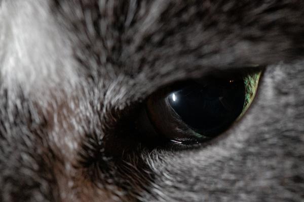 In The Blink Of An Eye by Merlin_k