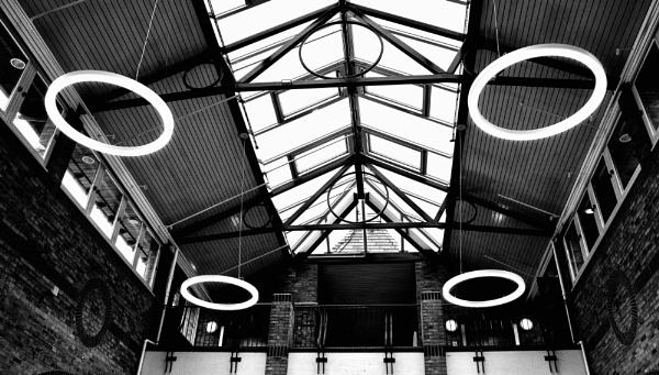 Ringlights by nclark