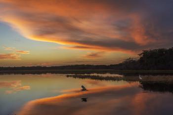 Twilight over the Myakka River