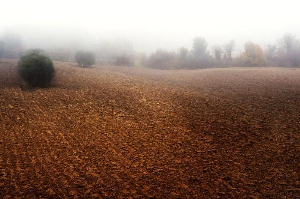Foggy Land by lanalang