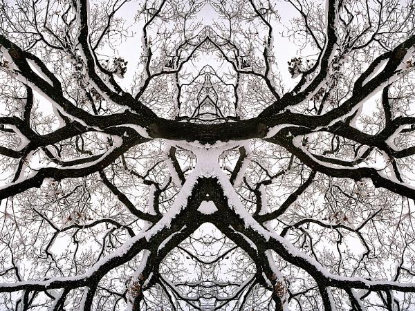 Branched Fantasies - Sauron by lanalang