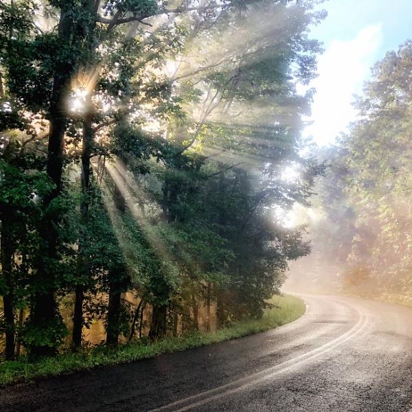 Dawn Road by eaglemtn