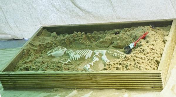 Dem-bones by mistere