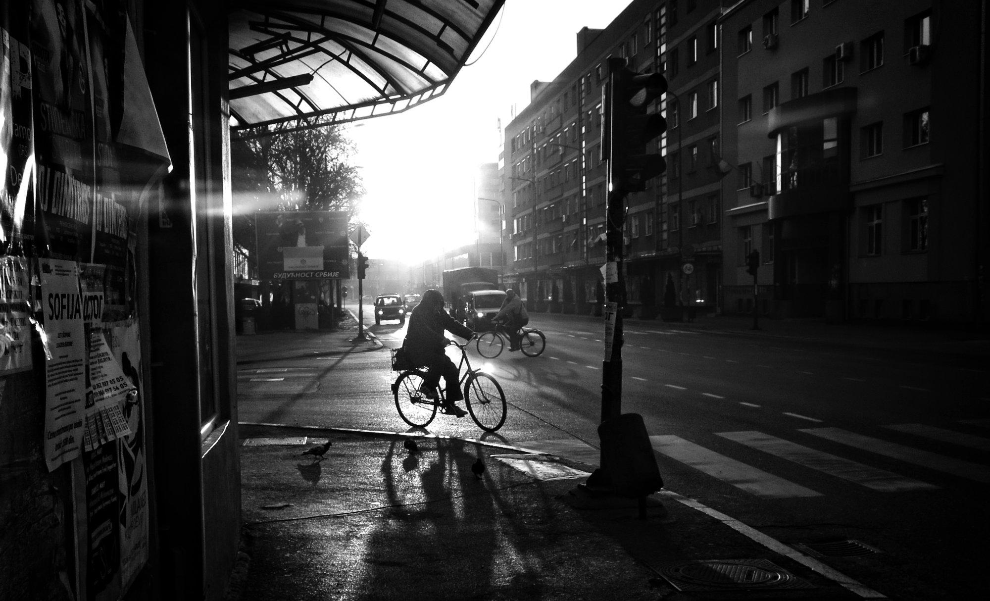 Shadows of Morning XLIII