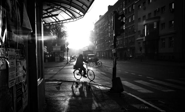 Shadows of Morning XLIII by MileJanjic
