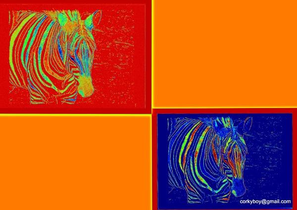 Zebra collage. by rustyshackleford