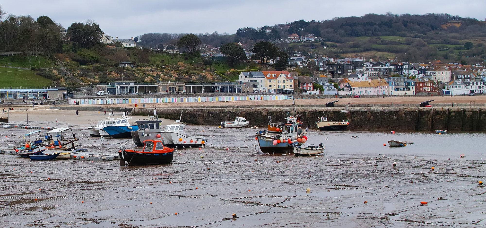 Lyme Regis from Harbour